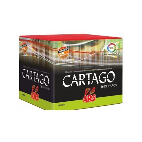 Cartago 36 disparos