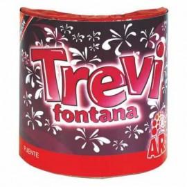 Fuente Trevi